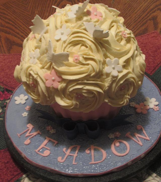 Party Cake for Meadow
