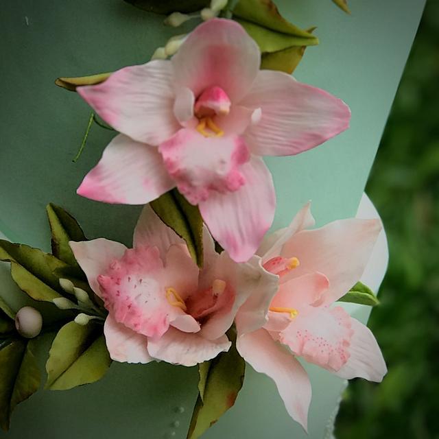 Orquidea cymbidium en pasta de goma