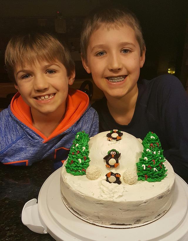 Fun winter cake
