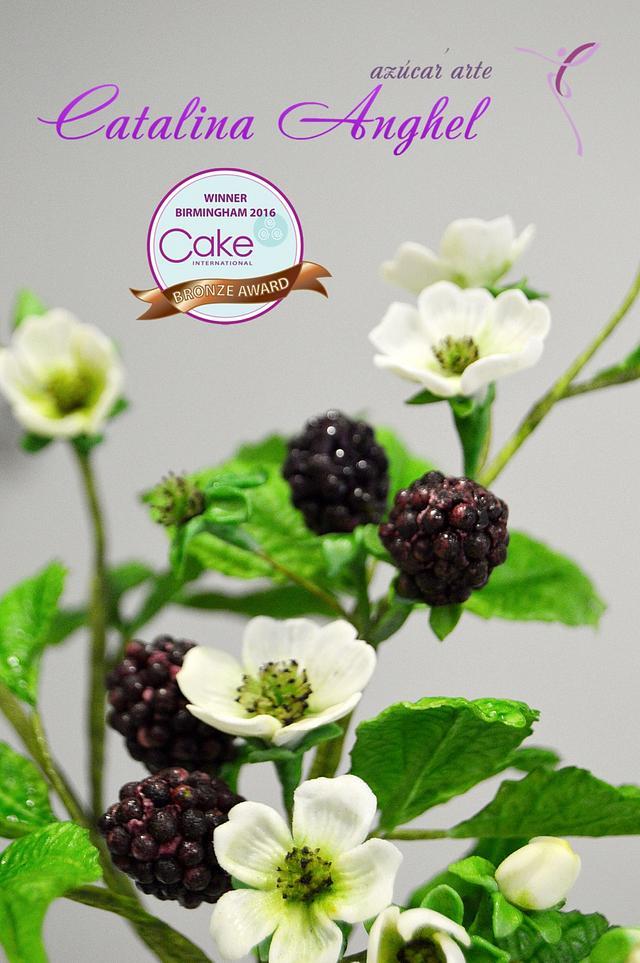 My Blackberries