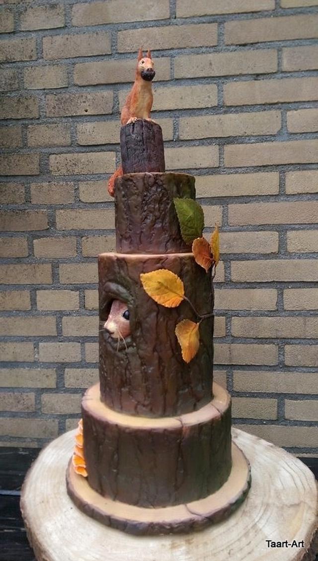 Sweet autumn collabration,  squirrel