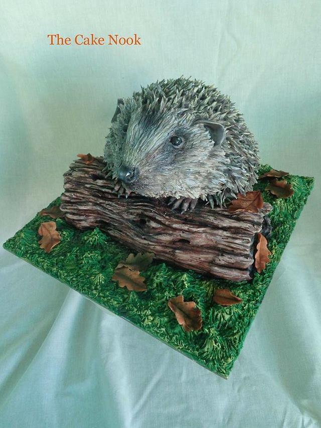 Hedgehog cake. (Animal rights collaboration)