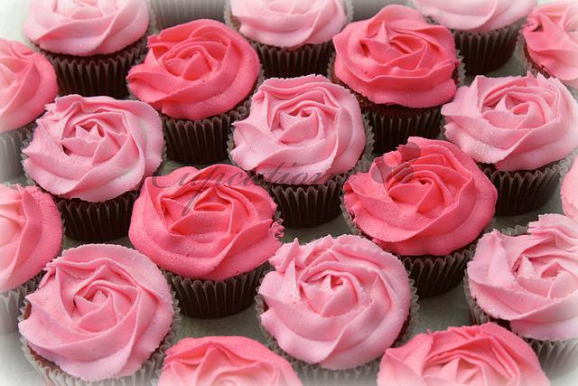 Pink Rose Swirls
