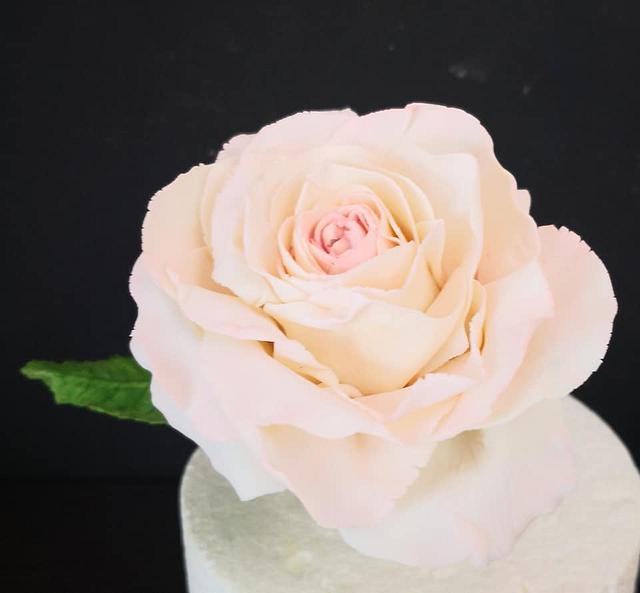 Rose gondole