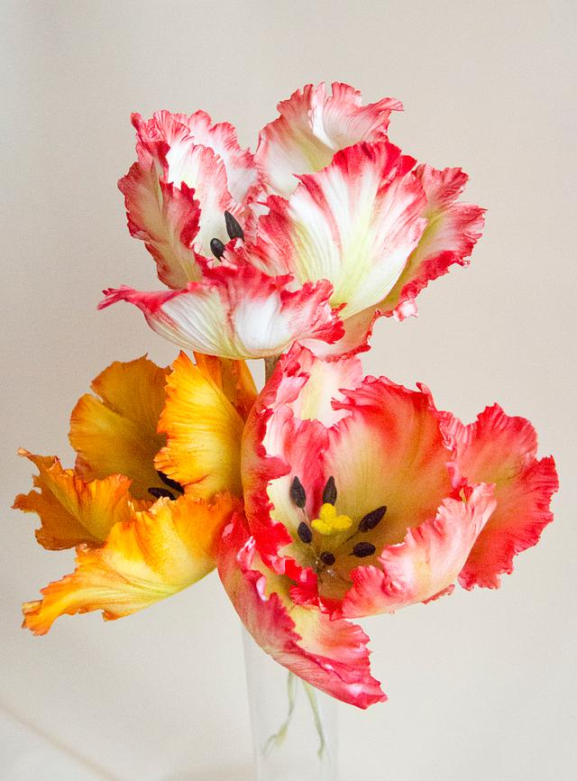 Gumpaste tulip
