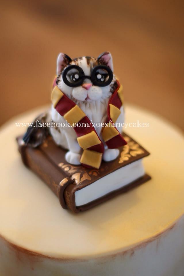 Astounding Harry Potter Cat Birthday Cake Cake By Zoes Fancy Cakesdecor Funny Birthday Cards Online Necthendildamsfinfo