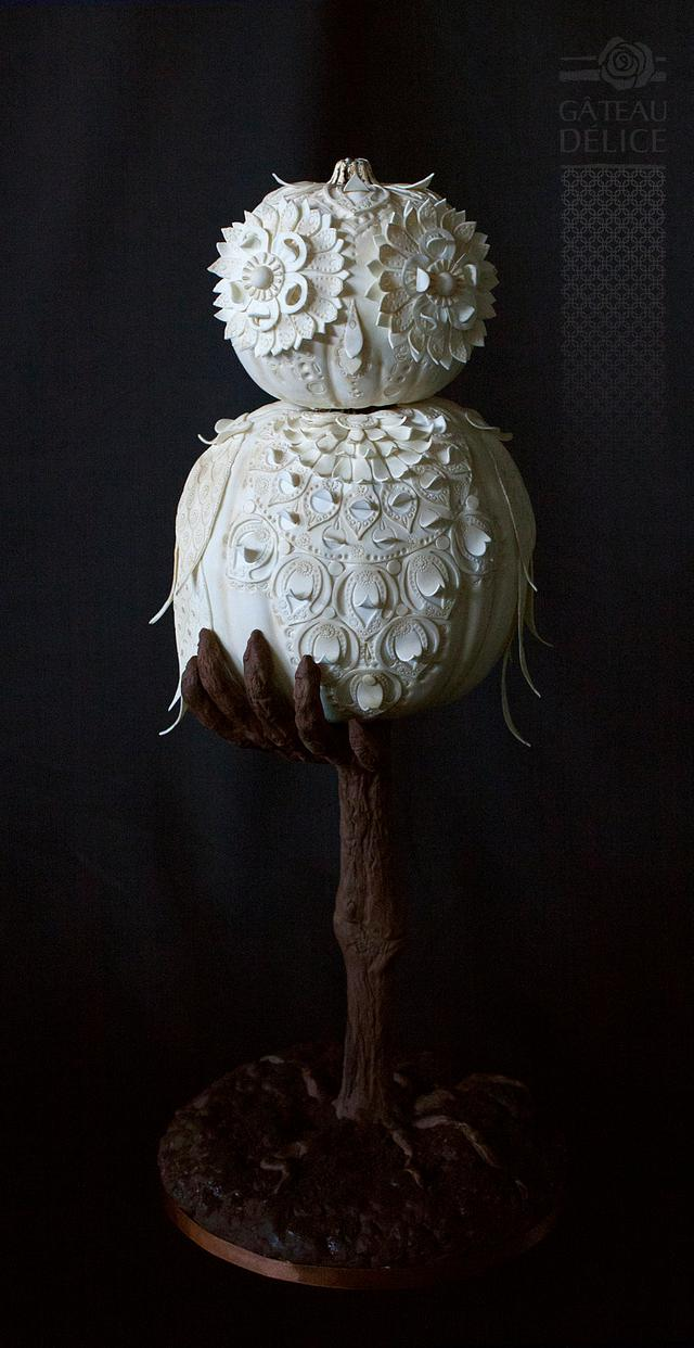 Owl pumpkin !!