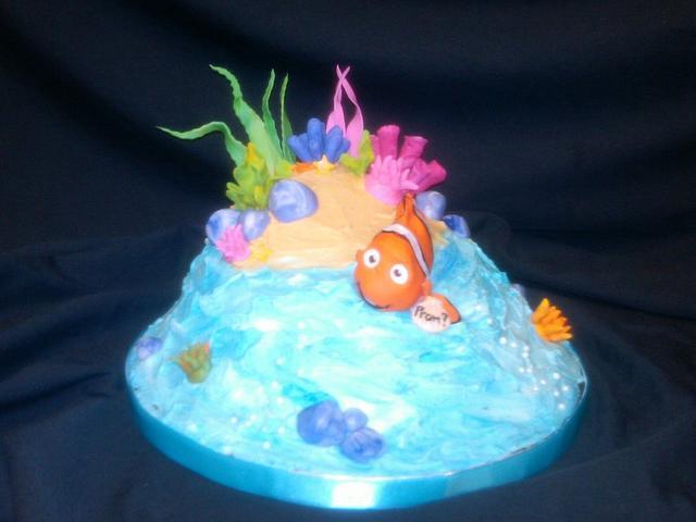 Finding Nemos Love!
