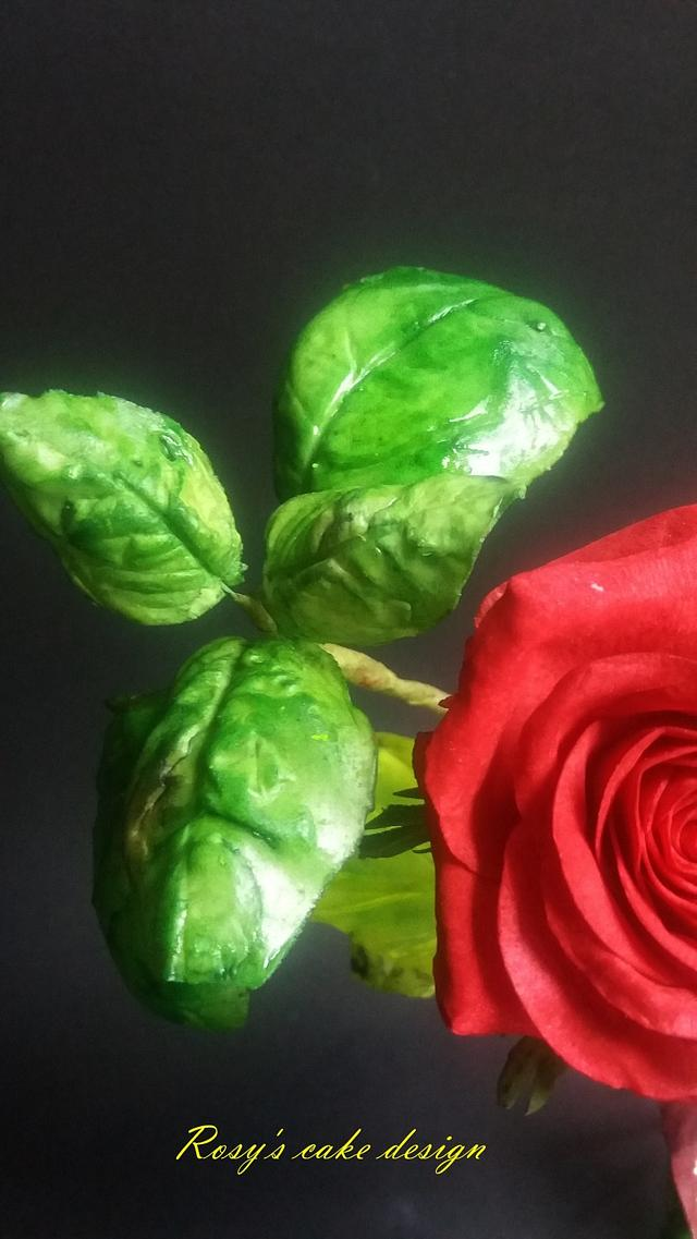 baccarà red rose , basil green and violet, ornamental leaves