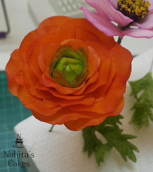 Renunculus gumpaste-flower