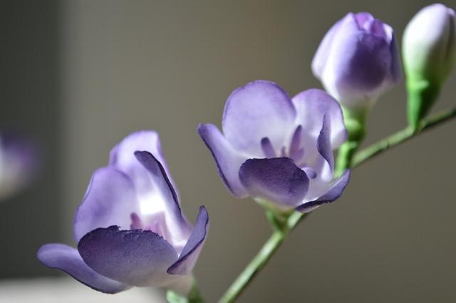 Lilac freesia spray