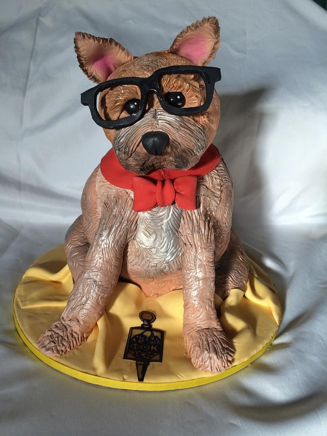 Yorkie sculpted dog cake - Graduation cake