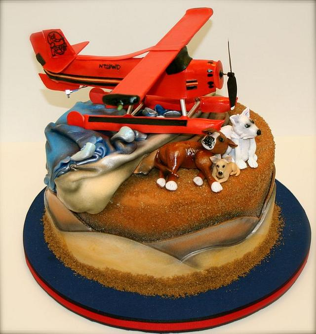 Seaplane Groom's Cake - Complete with rotating propellor & lights!