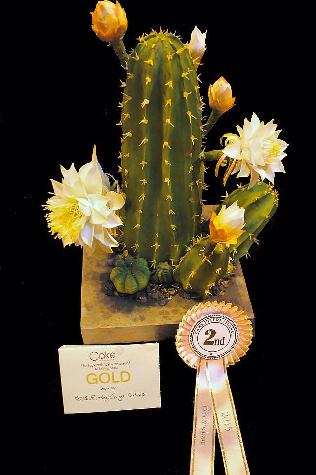 A species of Cactus Peruvianus