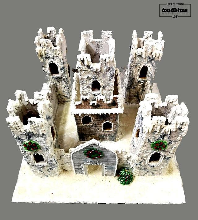 Nevado Citadel