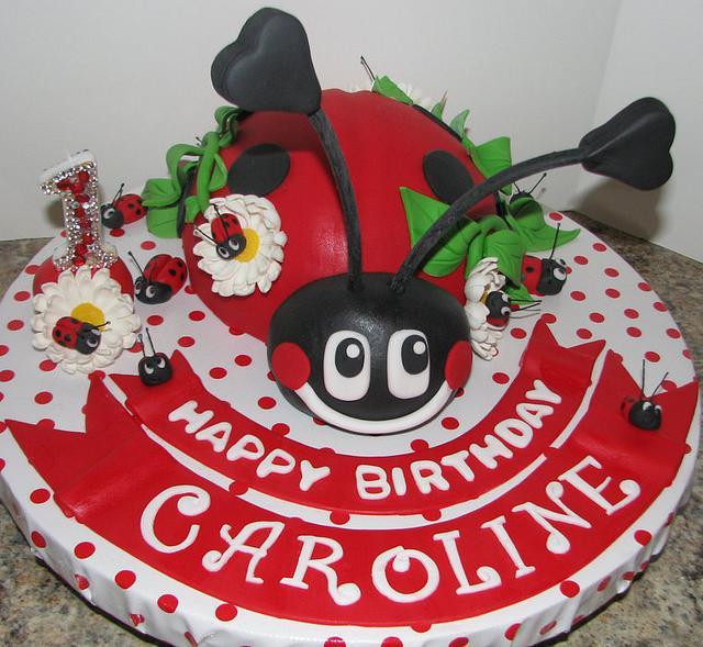 Lulu the ladybug smash cake