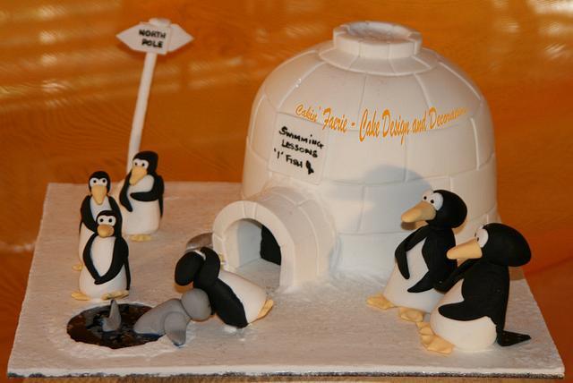 Penguin Swimming Lessons