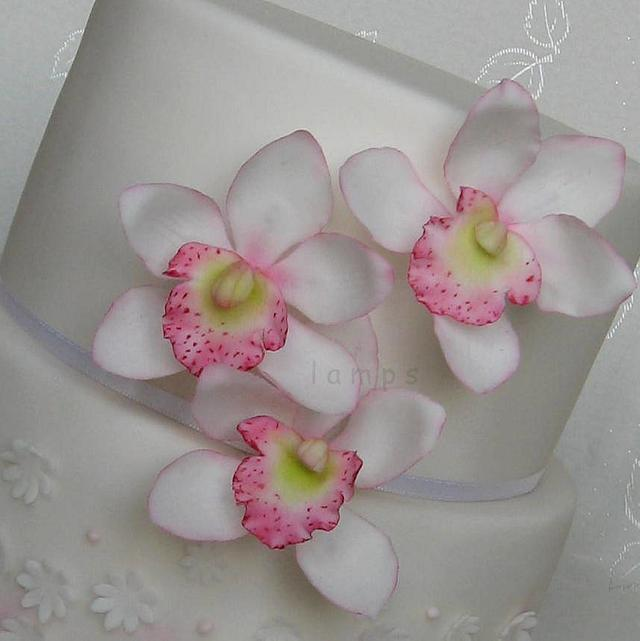 ...with orchid