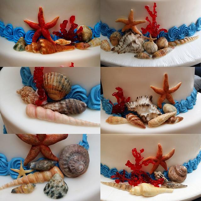 Wedding cake seashells