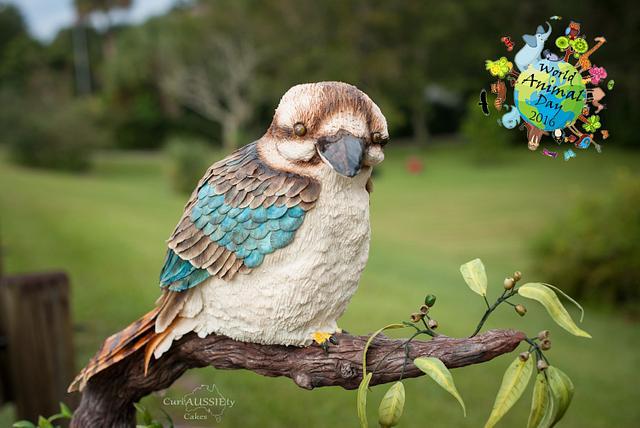 Gravity defying Kookaburra Cake - World Animal Day collaboration 2016
