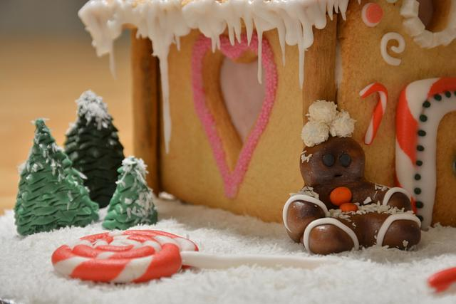 Sweet Christmas Collaboration - 'Run, run, as fast as you can!'