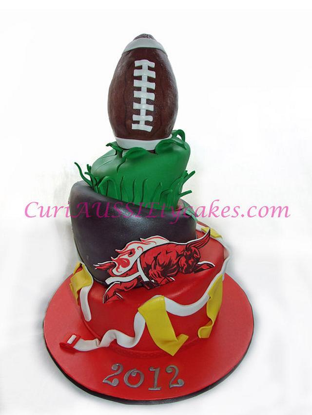 Bloomingdale Bulls girls flag football cake