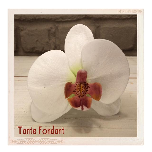 First gumpaste flower ever (moth orchid)