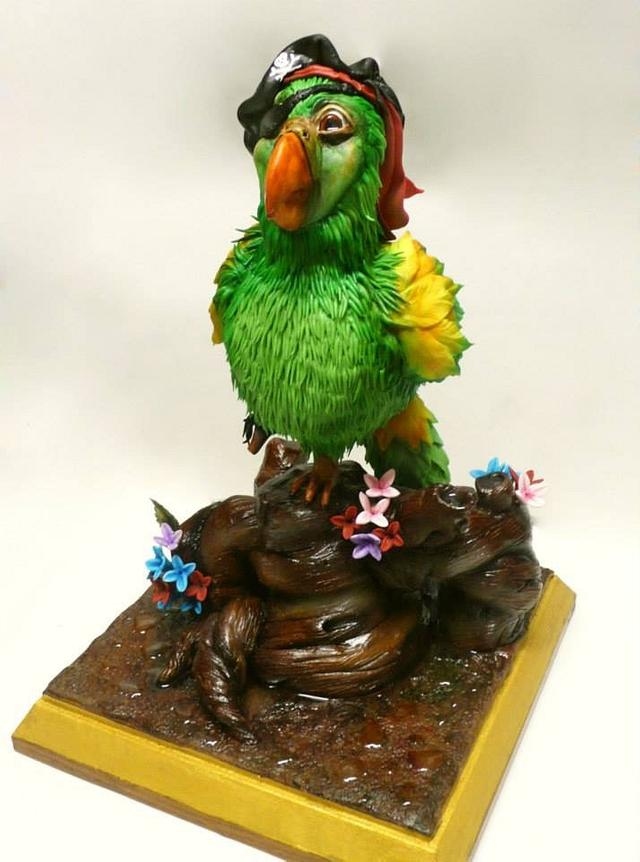 Parrot the Pirate Cake