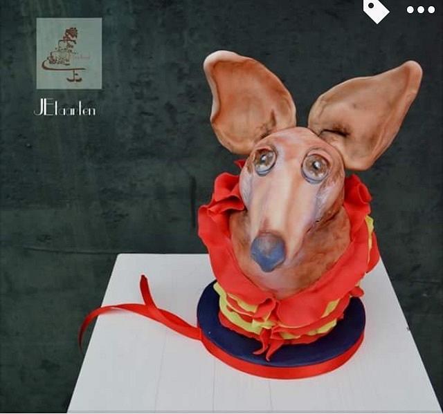Animal rights collaboration; Podenco dog