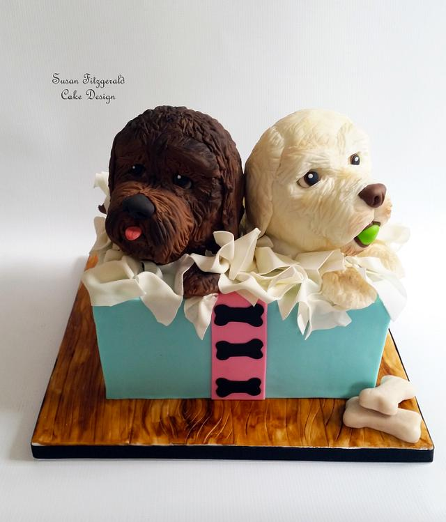 Labradoodles in a Box Birthday Cake