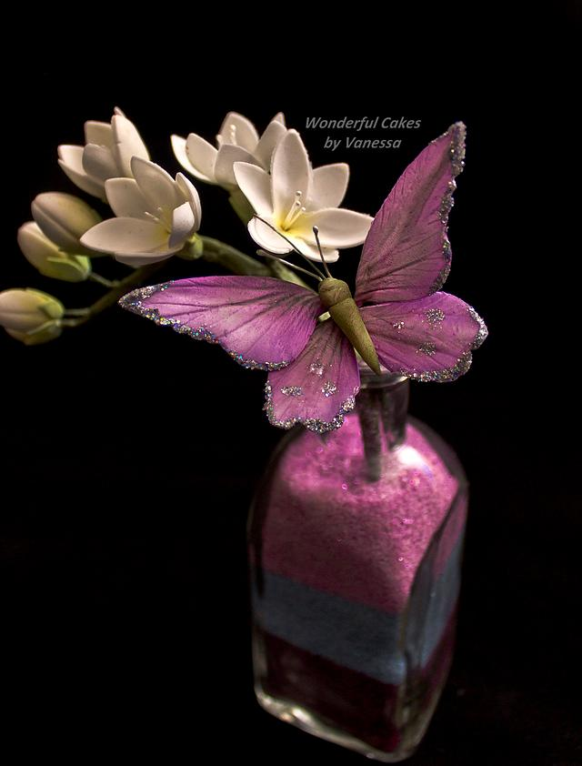 Butterfly on Freesia