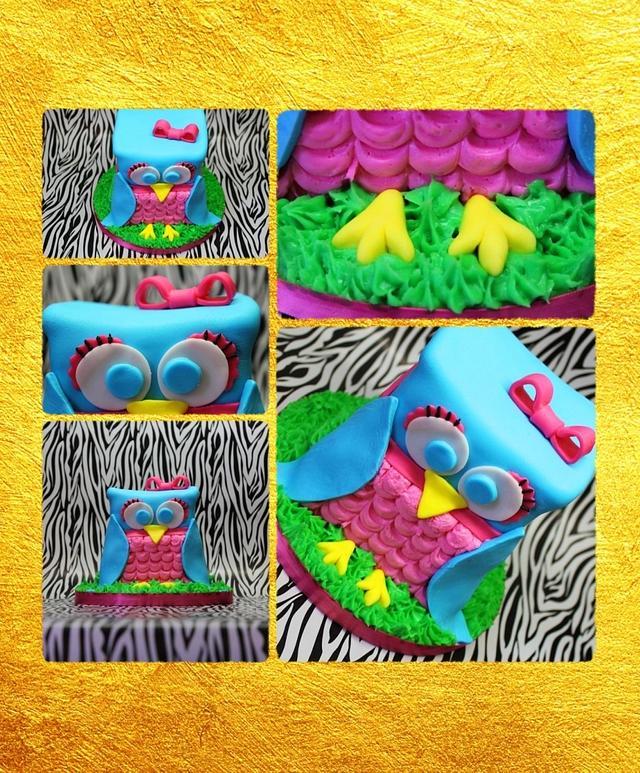 Teal Owl cake
