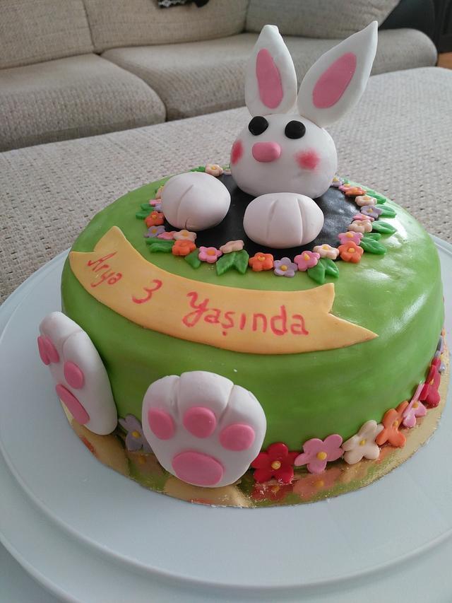 Cake with Rabbit