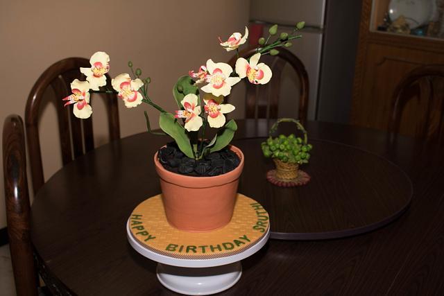 Orchid Flower Pot Birthday Cake