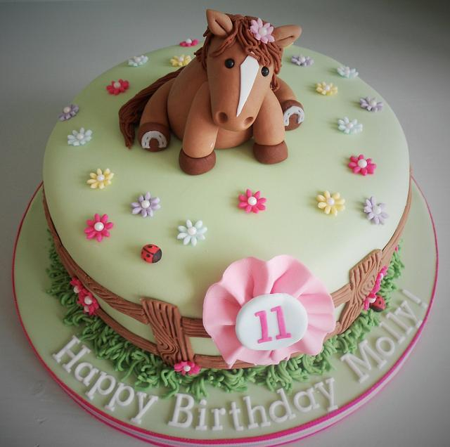 Awesome Girly Horse Birthday Cake Cake By Little Aardvark Cakesdecor Funny Birthday Cards Online Inifodamsfinfo