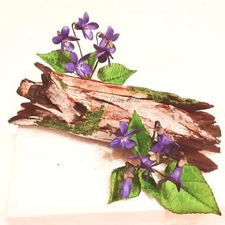 My violets