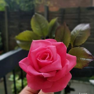 Rice paste rose