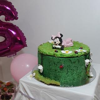 Minnie mouse with edible moss decoration