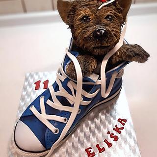 Dog in Converse - Cake by Majka Maruška