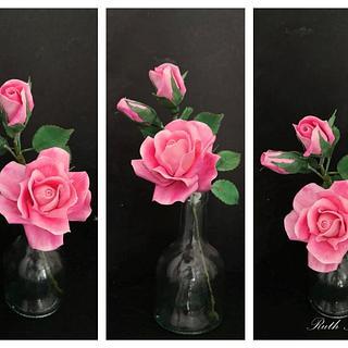 Hybride tea rose