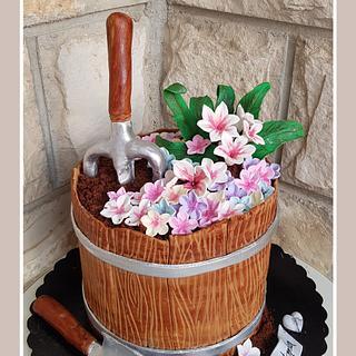 Bday cake - Cake by TorteMFigure