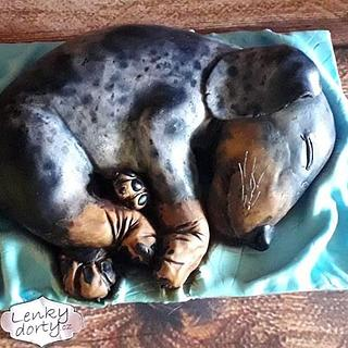 Cake Sleeping Puppy by Photo