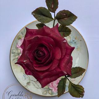 Rosas 💕