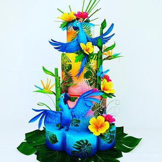 Rio cake lover