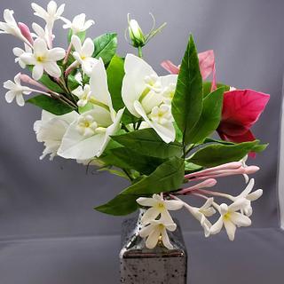Sugar Bougainvillea and Chinese jasmine.