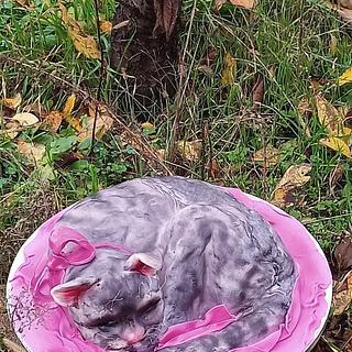 Cake 3d Cat