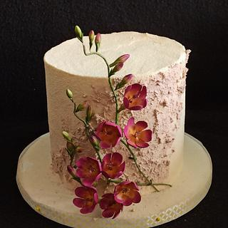 Cake with fressia