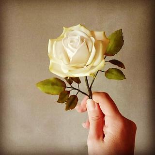 Sugarpaste rose