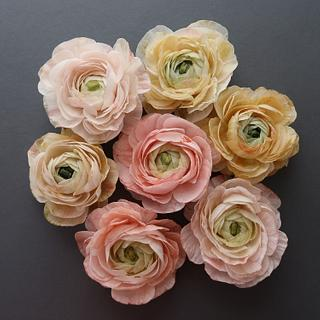 Learn how to create Wafer Paper Ranunculus - Cake by Anna Astashkina
