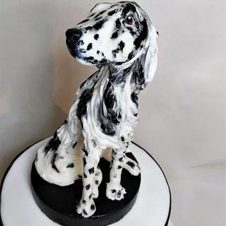 English Setter dog cake
